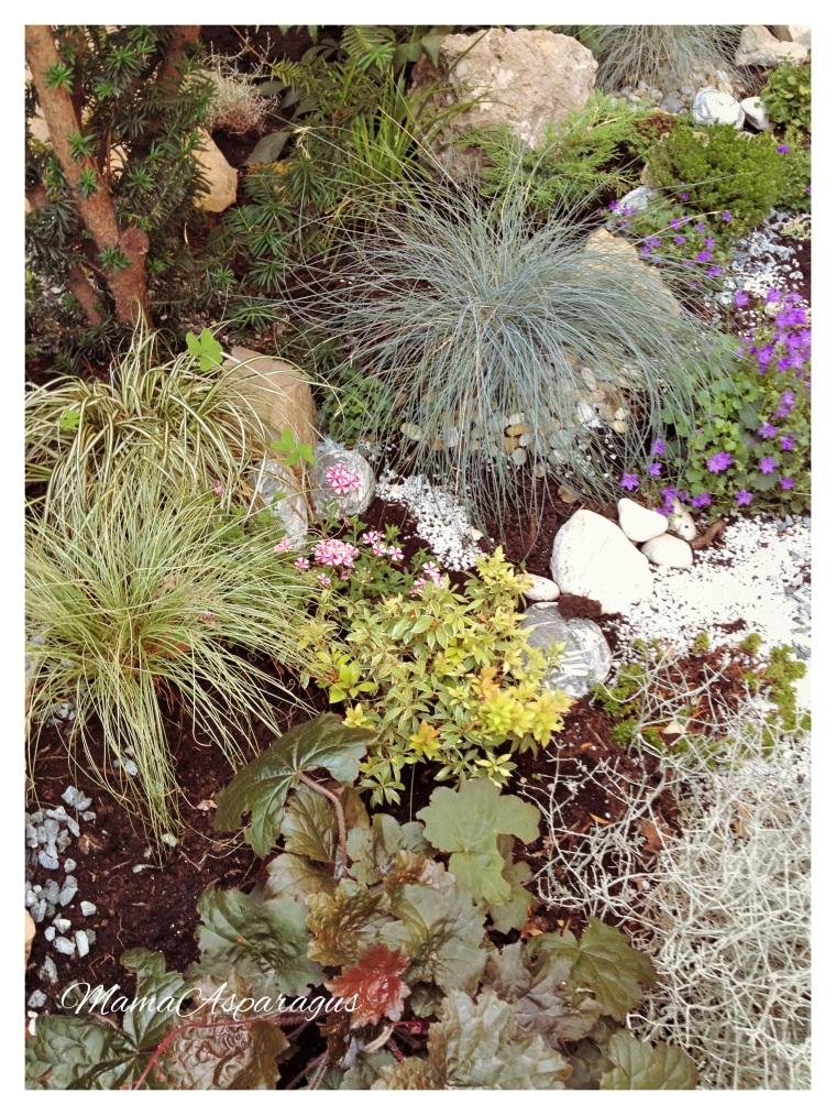Naš Zen vrt